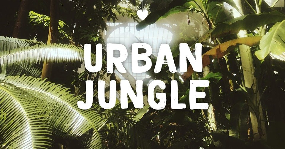 Urban Jungle!